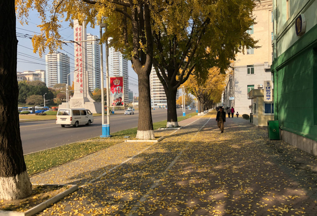 Streets of Pyongyang during autumn
