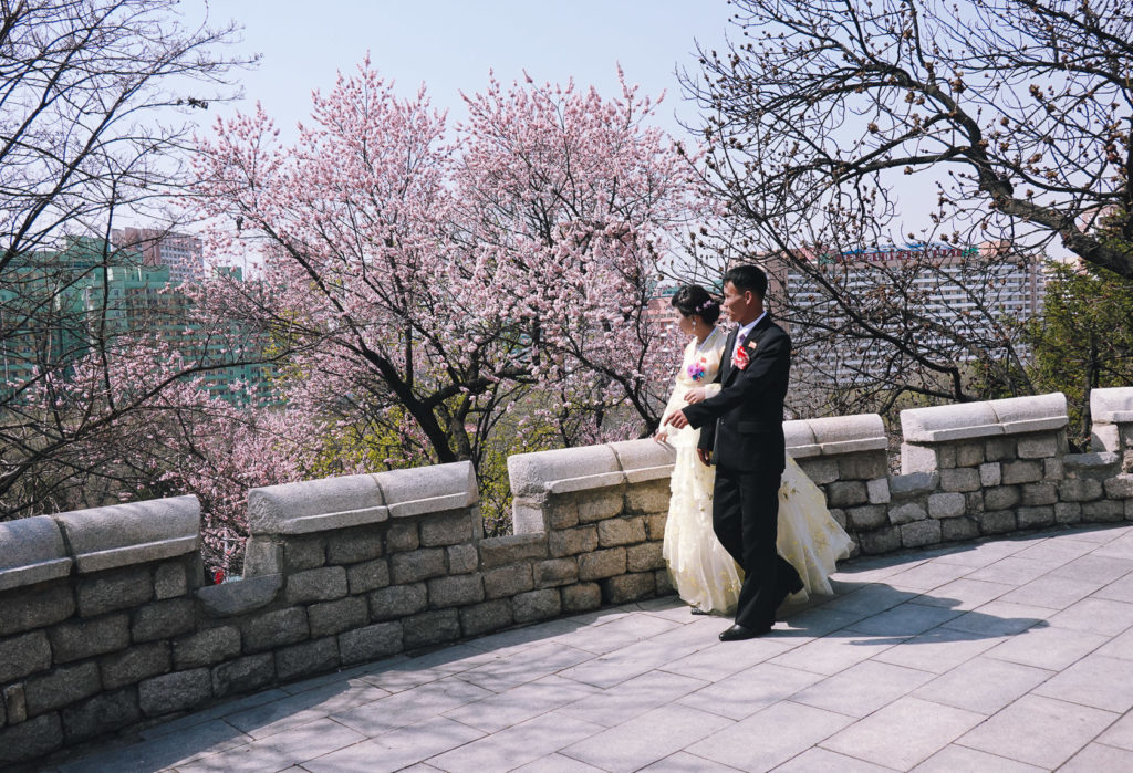 Wedding couple walking in Pyongyang during spring